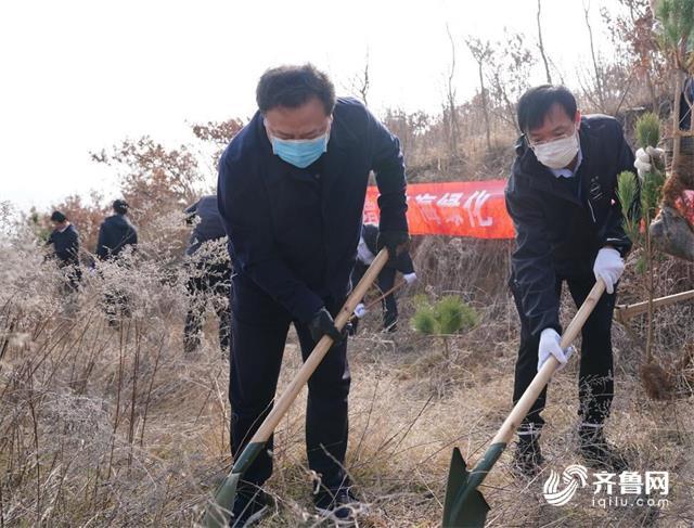 威海南海新区百余名志愿者栽下近万株黑松