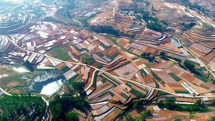 诗画山东 在沂蒙山区偶遇多彩梯田,纵横百里如画卷