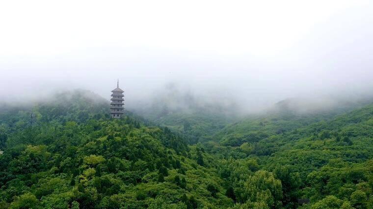 诗画山东 这样的红叶谷你见过么?翠山新雨后,云雾缭绕宛若仙境