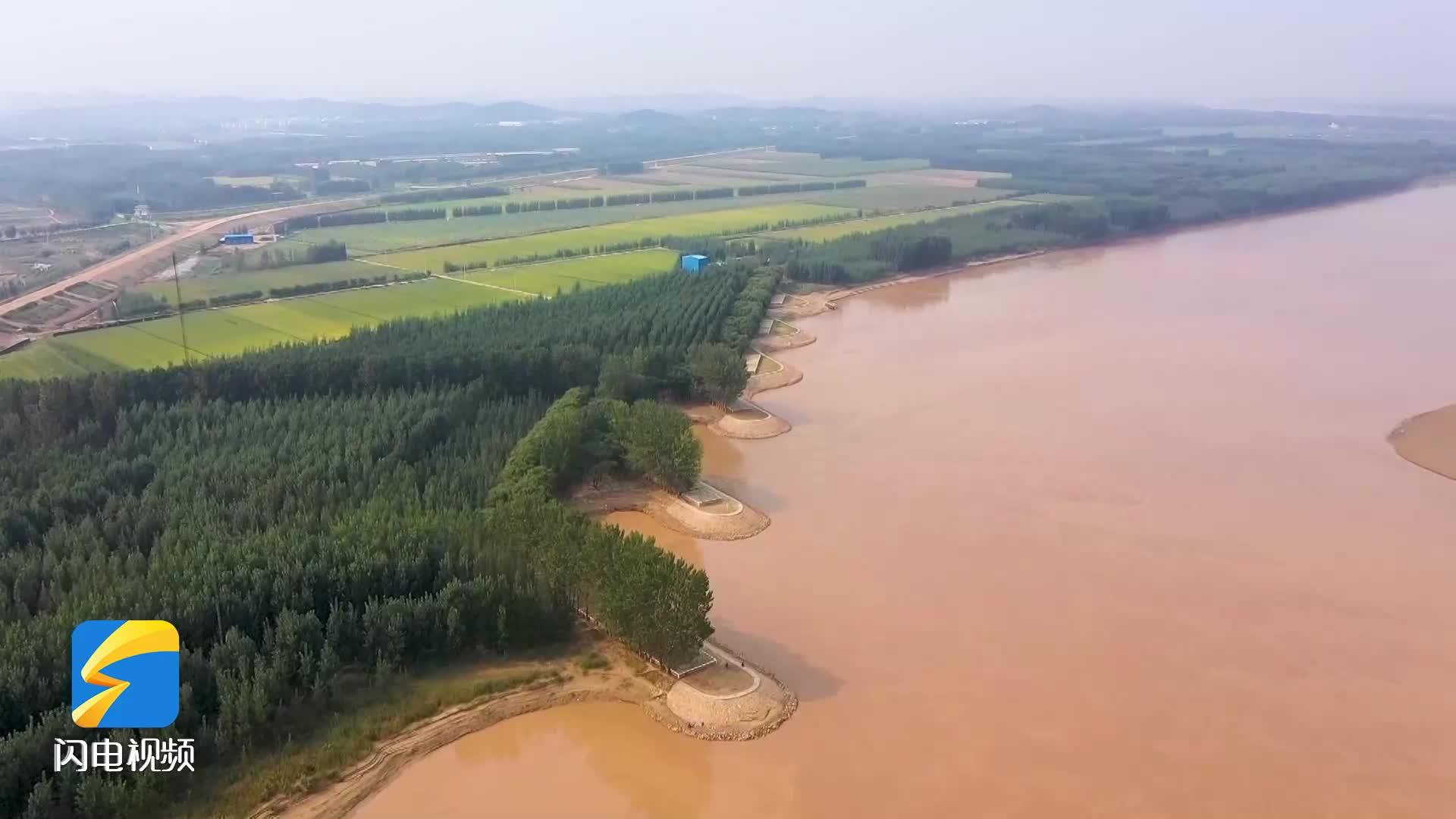 【沿着高速看山东】济东高速:行走黄河看巨变