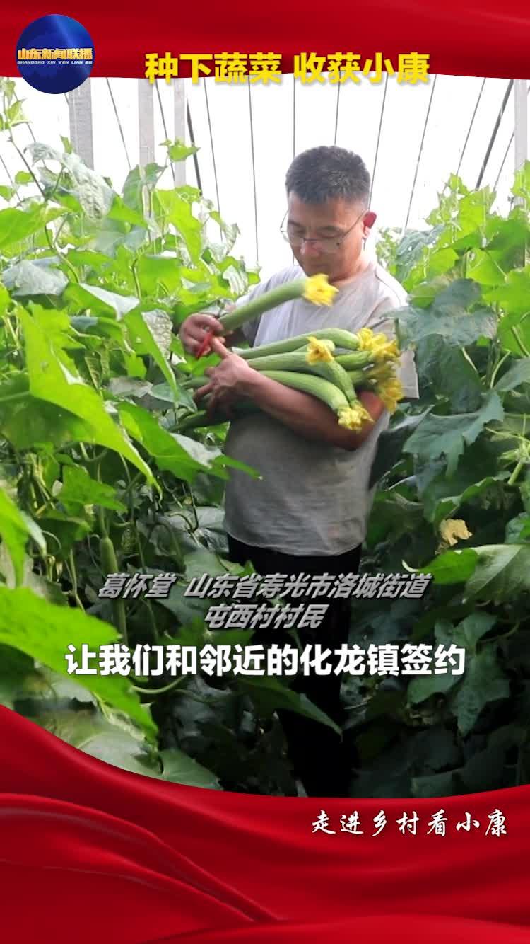 走进乡村看小康丨看寿光菜农们如何依靠蔬菜产业,走上致富小康路