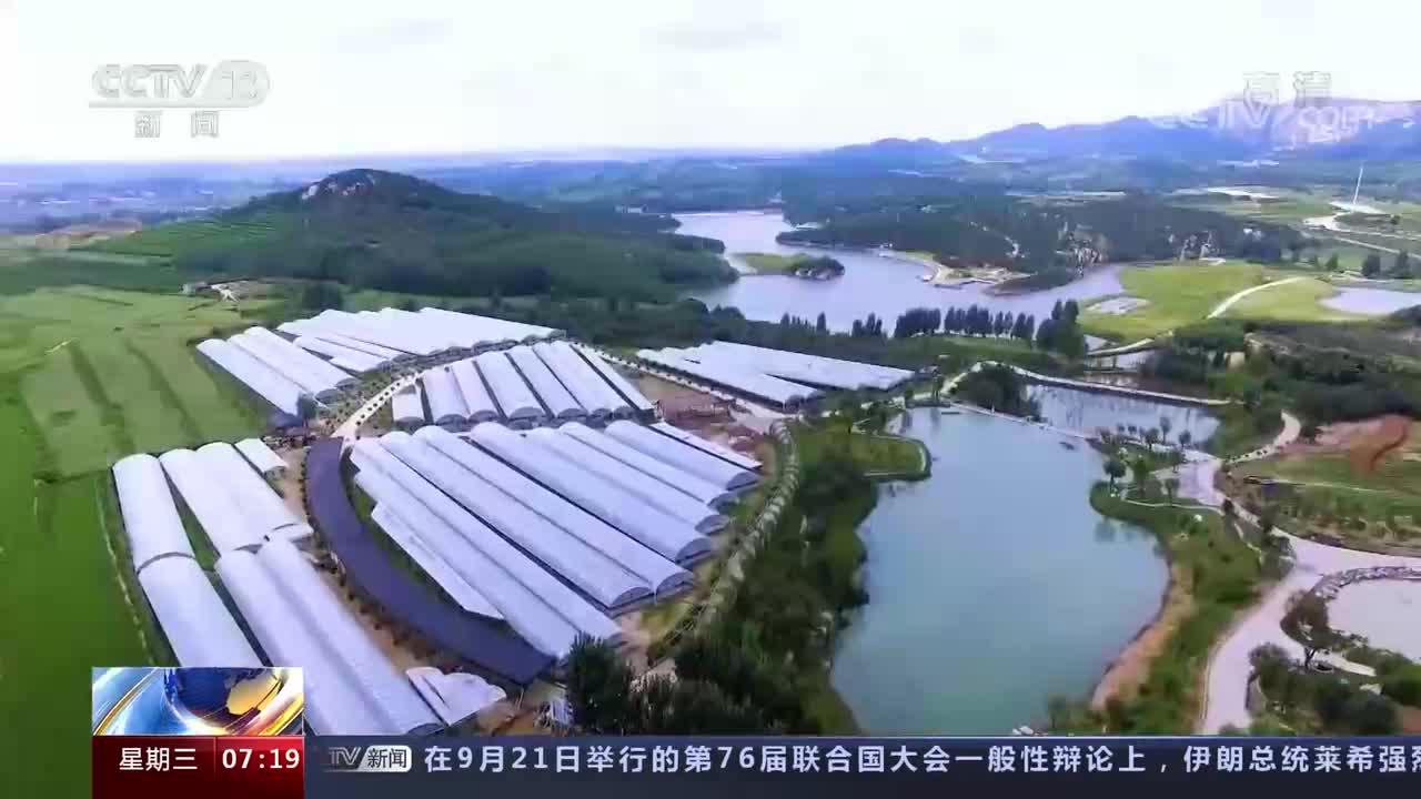 潍坊获央视点赞!农为邦本 产业集群 打造乡村振兴齐鲁样板