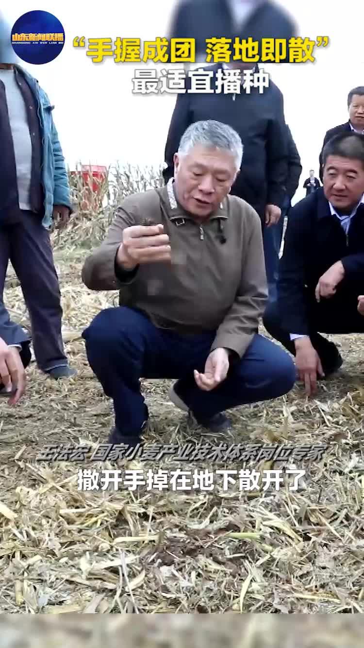"""关注三秋生产丨""""手握成团 落地即散"""" 最适宜播种"""