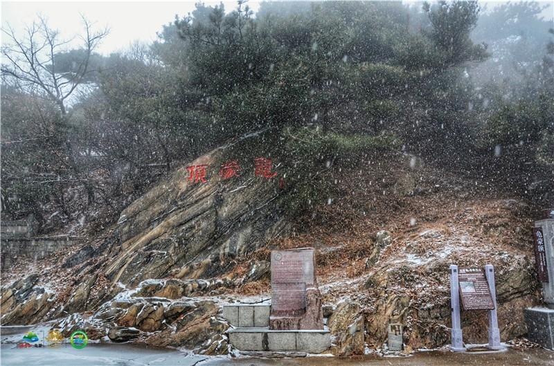 37秒|下雪啦!临沂入冬第一场雪竟这么美