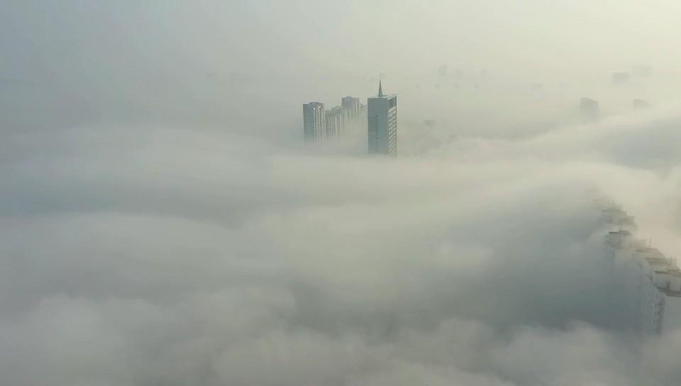 邹平平流雾楼宇穿雾若隐若现 仙境不过如此!