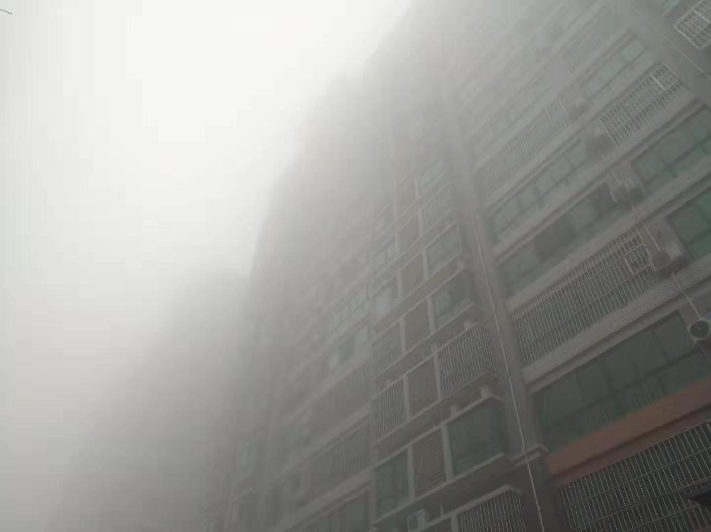 海丽气象吧|预警升级!山东发布大雾红色预警 5个市出现特强浓雾
