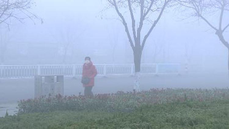 59秒丨大雾迷城 滨州市各部门启动应急措施