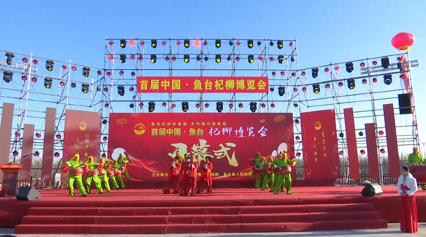 104秒丨小杞柳大产业 首届中国·鱼台杞柳博览会举行
