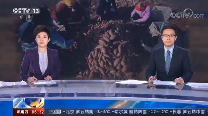央视《朝闻天下》|临沂费县:紫薯待售 网络平台开辟助农销售专区