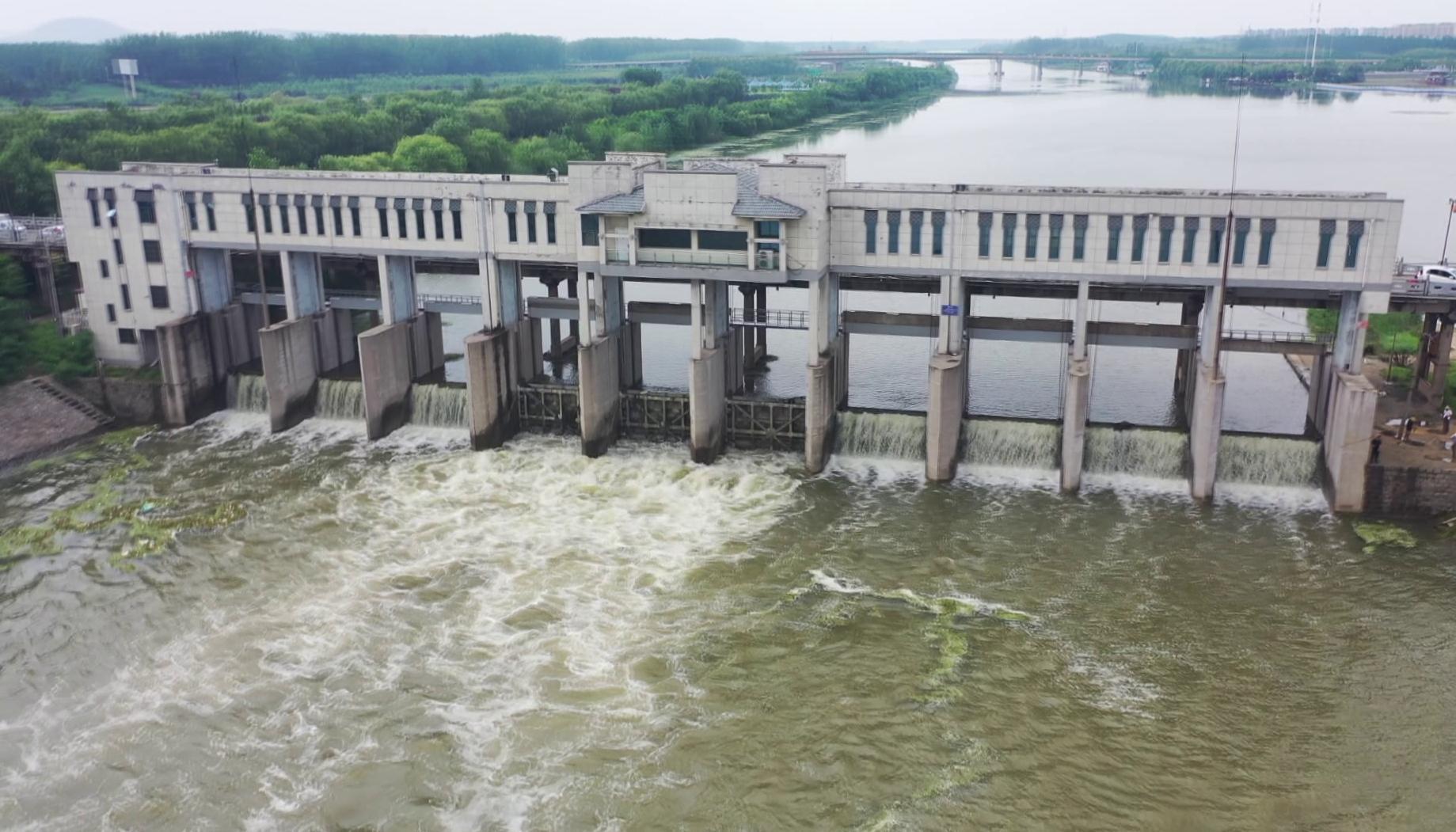 71秒丨京杭运河枣庄台儿庄段迎来汛期首次开闸泄洪