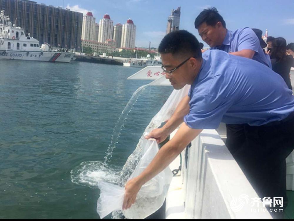 250万尾鱼苗今天放入黄海 威海检察公益诉讼助力海洋生态修复