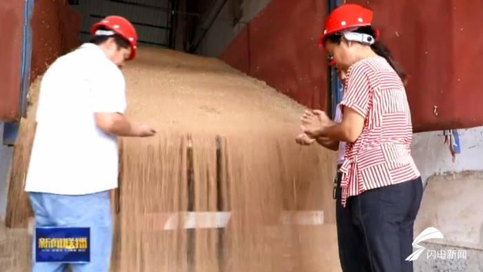 食品 科技做依托!山东小麦产业升级带动消费升级,百姓餐桌更丰富