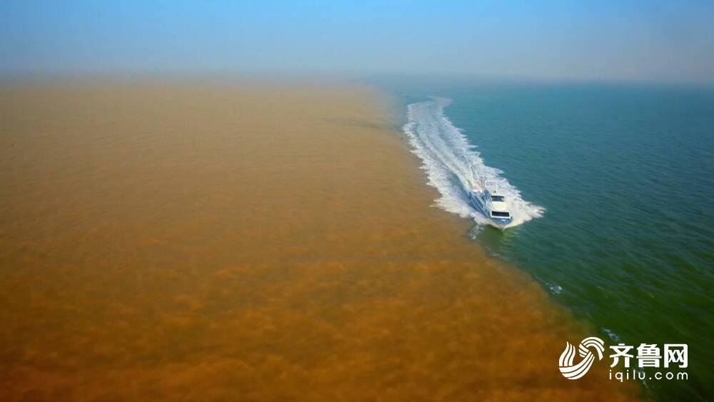 我的黄河印象Vlog丨黄河滩区林家村第一书记:黄河是我写作的源泉 会用一生感知这条河的脉动