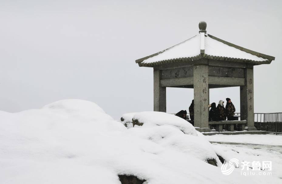 组图|泰山今冬第一场雪,如约而至!