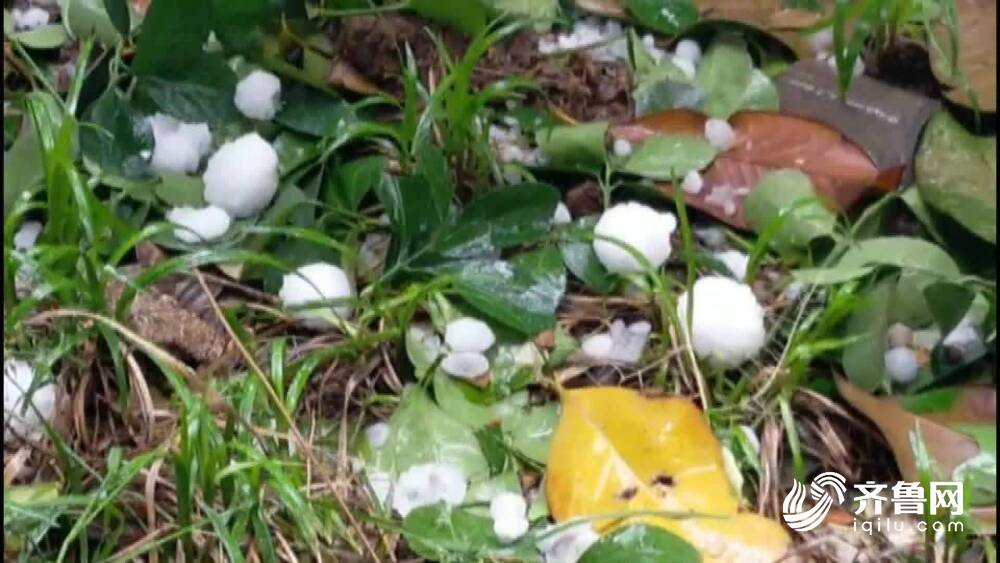 63秒丨最大如乒乓球大小!济宁、临沂等多地降下冰雹,半岛地区仍有雷阵雨