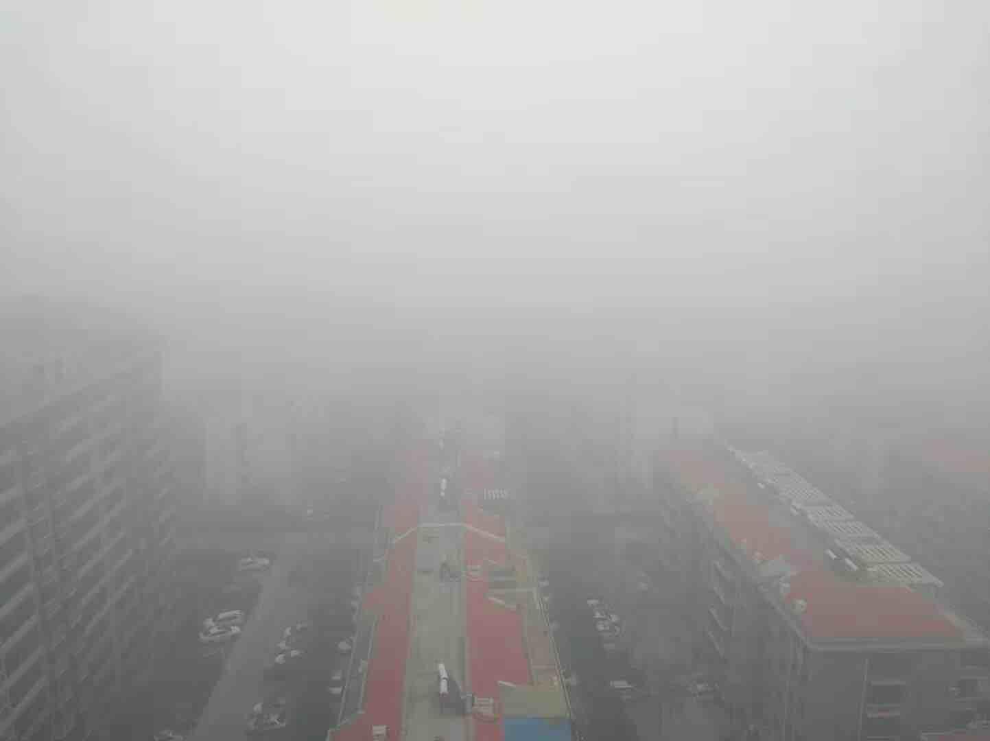 海丽气象吧丨强浓雾再来袭!山东发布大雾黄色预警 局地能见度不足50米