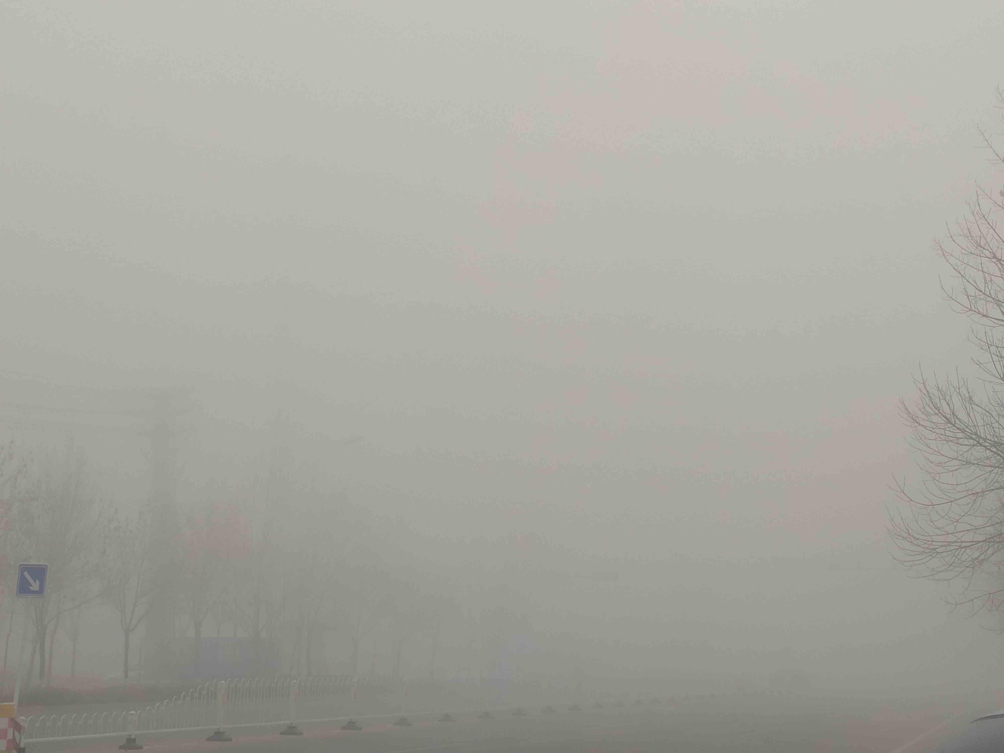 海丽气象吧|预警再次升级!山东再次发布大雾红色预警 11市出现特强浓雾