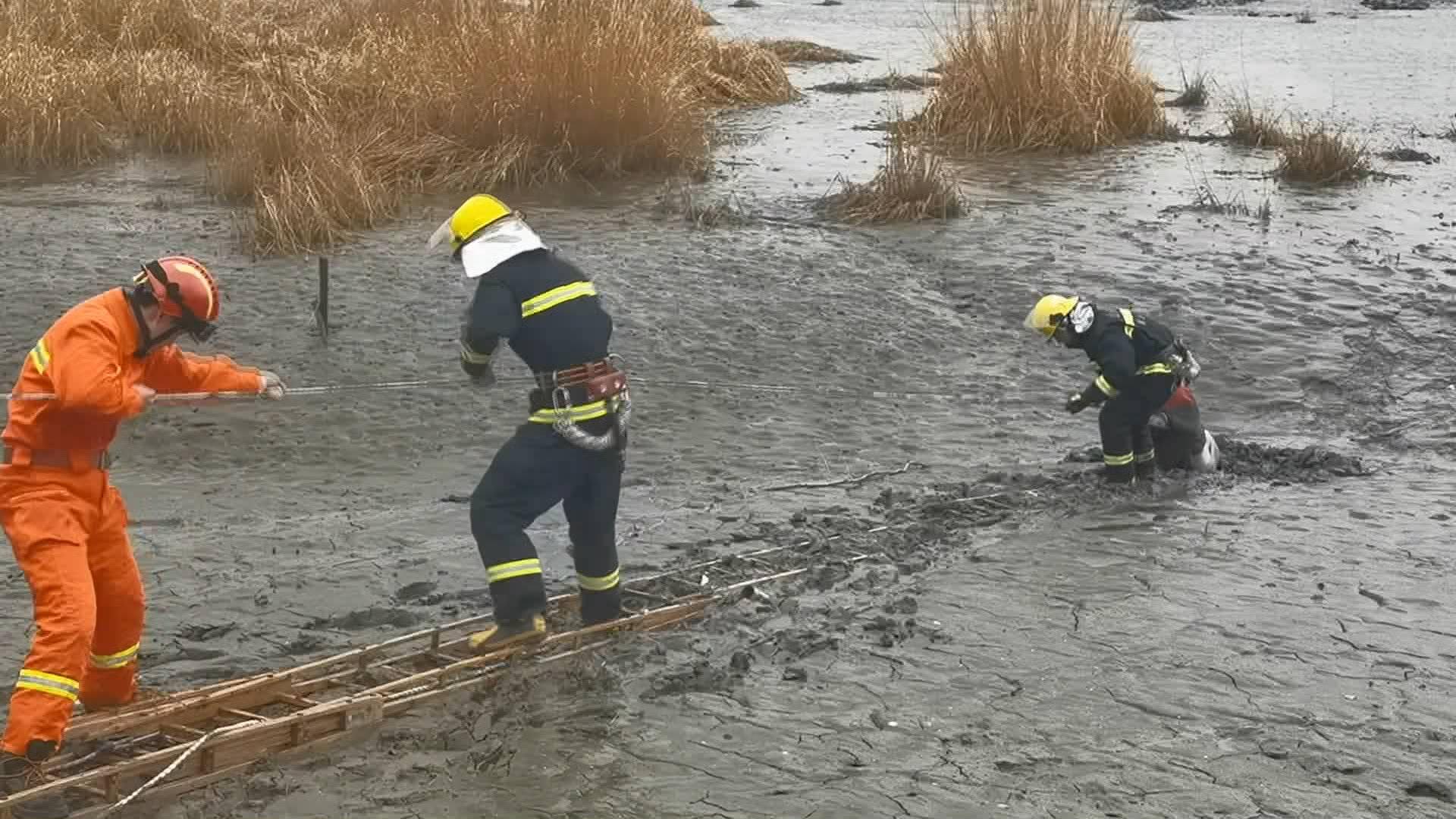 50秒丨青岛六旬老人挖苔藓误陷河道淤泥 消防员用拉梯施救
