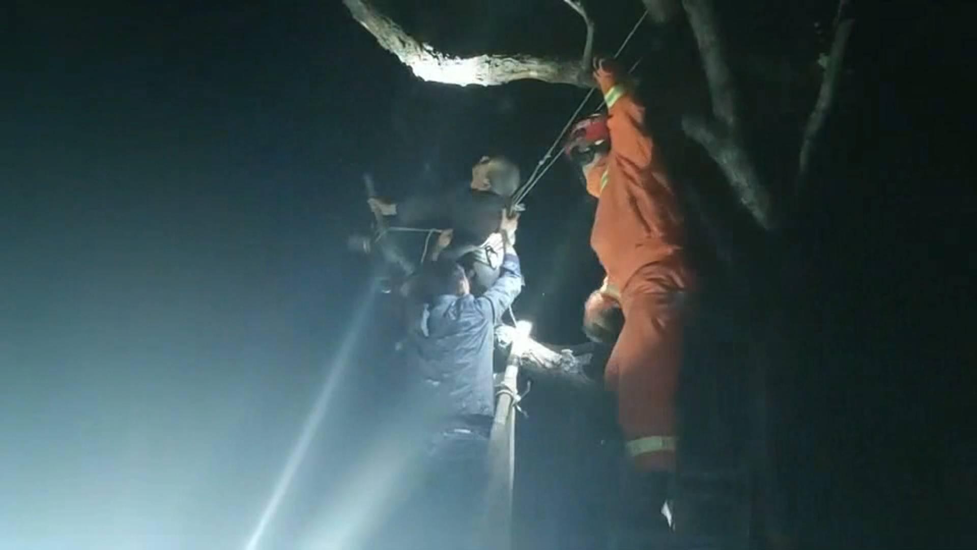 淄博一80岁老人为摘香椿被困树上 消防紧急救援