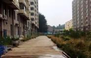 """小区管理混乱、临时电何时""""转正""""……潍坊坊子区市民关心的民生问题有回复了"""