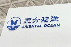 """东方海洋科技因违规提供担保等4项违规行为被出具""""警示函"""""""