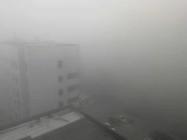 海丽气象吧|潍坊迎来大雾天气 部分地区能见度小于50米