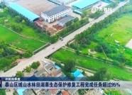 冲刺四季度丨泰山区域山水林田湖草生态保护修复工程完成任务超过95%