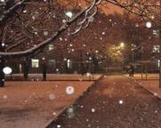 海丽气象吧丨你等的雪要来啦!山东明天迎来明显雨雪天气 5个市小雨转小到中雪