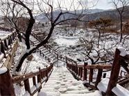 32秒丨走进雪后的文登昆嵛山 银装素裹美如画