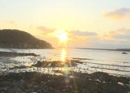 威海荣成:人与天鹅共舞 喜迎2020年第一缕阳光