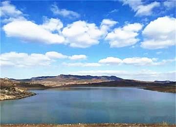 筑牢水库生态 威海武林水库建起860米长龙柏长廊