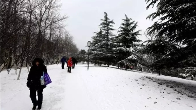 """2020年""""第一场雪""""来了!6号到7号山东南部将迎来大到暴雪"""