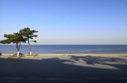 齐赏好景丨威海国际海水浴场冬日恬静风光美
