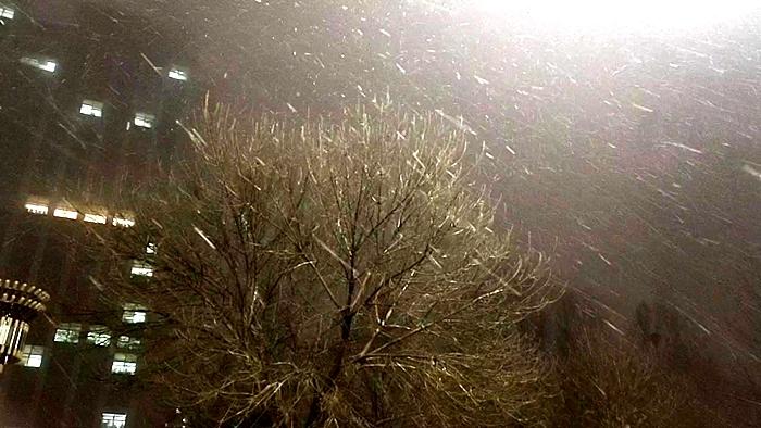 5日夜间聊城迎来降雪天气 预计6日夜间大到暴雪来袭