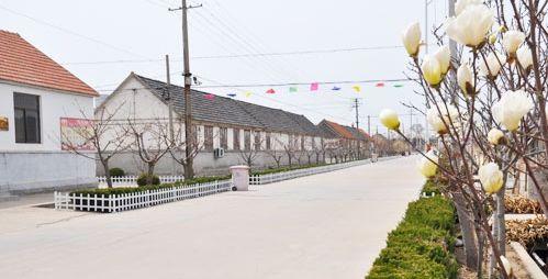 威海文登村内道路硬化工程线路图审核工作启动