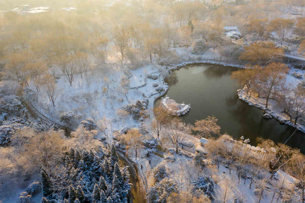 每一张都是屏保!初雪后的泉城公园美景如画
