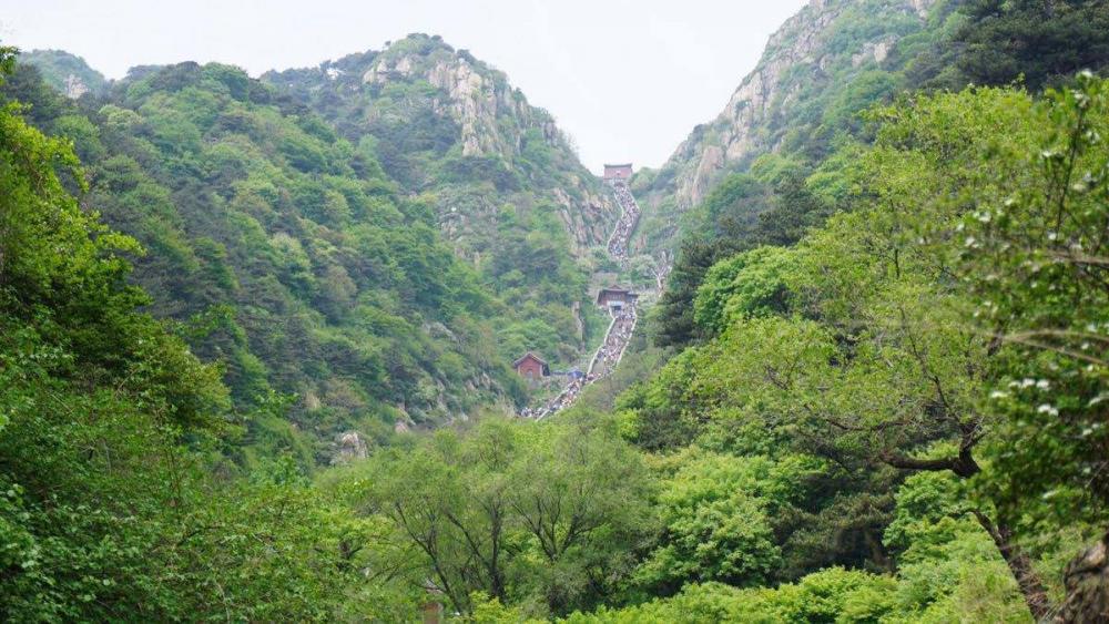 2019山东环境行政处罚通报!潍坊一年罚了1.4亿多 全省第一