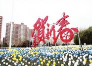 威海荣成市区春节亮化工作完成  节日氛围浓厚