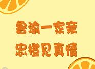 """漫漫说⑭丨带着""""忠橙""""闯山东"""