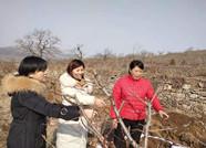 省派青州市乡村振兴服务队:深入一线 助力灾后重建谋划乡村振兴