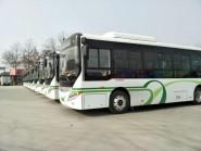 从除夕到初六 潍坊城区13条定制公交线路运行时间有变化