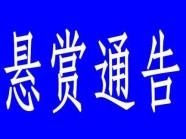 """每条线索奖励3000元!寿光市人民法院发布悬赏""""通缉令"""""""