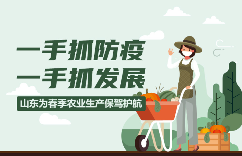 一手抓防疫 一手抓发展!一图看懂山东春季农业生产新举措
