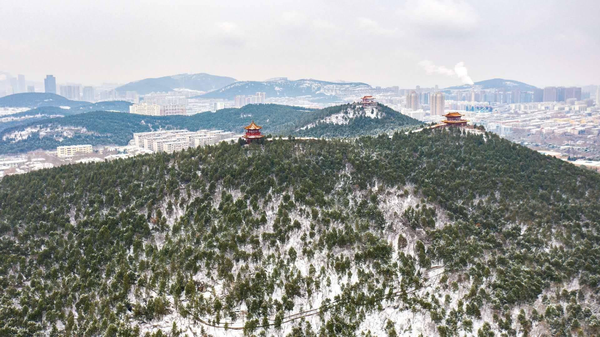 泉城迎大雪,济南银装素裹成冰雪世界