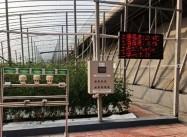"""动动手指就能""""种棚"""" 寿光智慧农业系统帮助菜农科学防疫"""