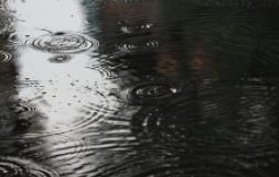 海丽气象吧丨济宁市24日有小雨局地中雨 雨后气温将有所下降