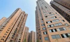 2019年全省经济社会发展情况解读⑨2019年山东省房地产开发市场运行平稳 ,居住品质不断改善