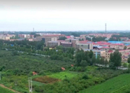 """潍坊这个乡镇全面推行""""村党支部领办合作社"""" 走出乡村振兴特色路径"""