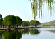 德州发布第4号总河长令,每个县市区今年至少打造2条市级美丽河湖示范样板