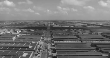 央视《朝闻天下》:从地头到市场 潍坊寿光绿色通道保畅行